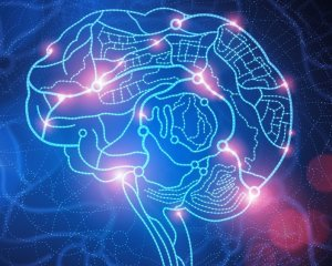 Increased activation of neurons in the brain
