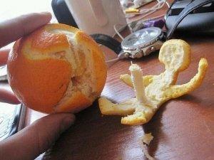 Orange erection